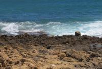 http://playas.lasprovincias.es/sites/playas.lasprovincias.es/files/imagecache/Foto_original/105.jpg