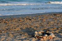http://playas.lasprovincias.es/sites/playas.lasprovincias.es/files/imagecache/Foto_original/DSC_0065.JPG