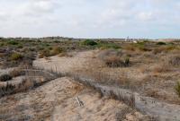 http://playas.lasprovincias.es/sites/playas.lasprovincias.es/files/imagecache/Foto_original/DSC_0220.JPG