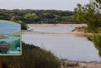 http://playas.lasprovincias.es/sites/playas.lasprovincias.es/files/imagecache/Foto_original/DSC_7929.JPG