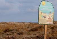 http://playas.lasprovincias.es/sites/playas.lasprovincias.es/files/imagecache/Foto_original/DSC_7937.JPG