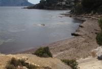 http://playas.lasprovincias.es/sites/playas.lasprovincias.es/files/imagecache/Foto_original/playas_140.jpg